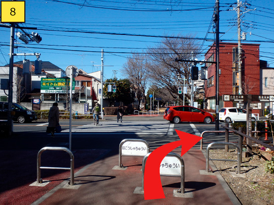 ⑧Arriving at road(Koganei highway), turn right, but do not go across pedestrian crossing.