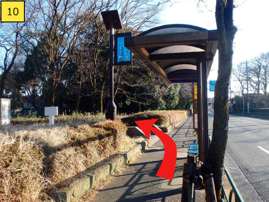 ⑩Getting off 「Koganei Park West Gate」, you can see the entrance of Koganei Park.