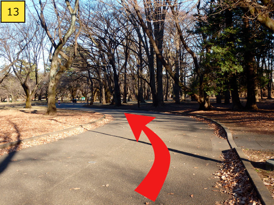 ⑬Turn left along the road and walk about 50m.