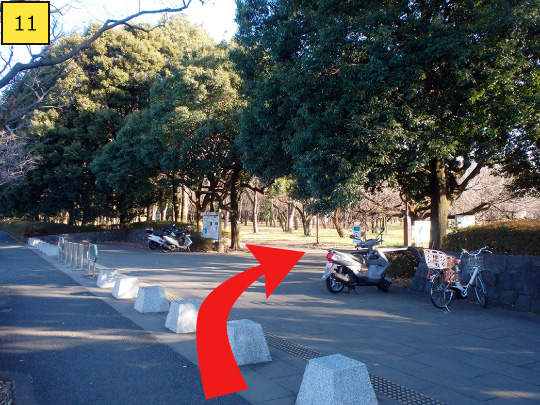 ⑪You can see the entrance gate of Koganei Park at right side.
