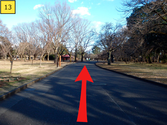 ⑬It gently curves to right, but walk 130m straight forward along the road.