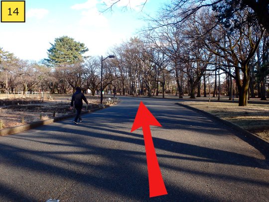 ⑭It gently curves to left, but walk 130m straight forward along the road.